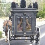 Hearse Rear View